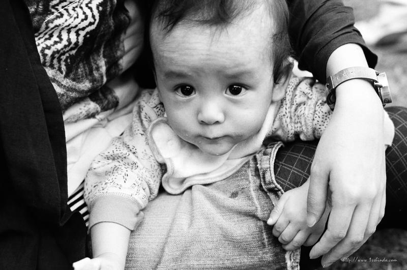子供の眼差し / Leica MP+ summilux50mm
