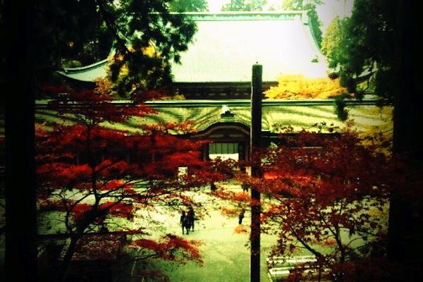 延暦寺を階段の上から撮影★