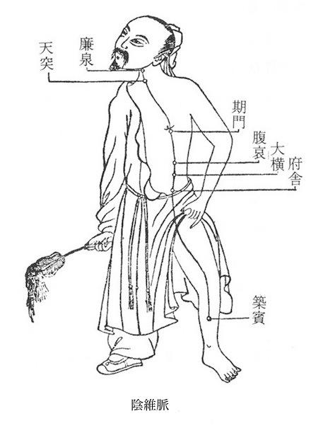 足の少陰腎経:【築賓】 | 鍼灸治...