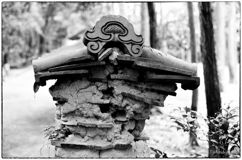 境界 Leica MP+Elmar , Tri-X