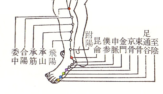 足太陽膀胱経『中医学の基礎』東洋医学出版社より