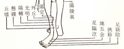 足少陽胆経足太陽膀胱経『中医学の基礎』東洋医学出版社より