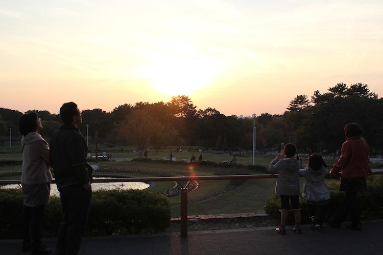 夕焼け(12月初 緑地公園にて)