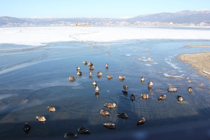 長野県のとある湖にて(3年前)