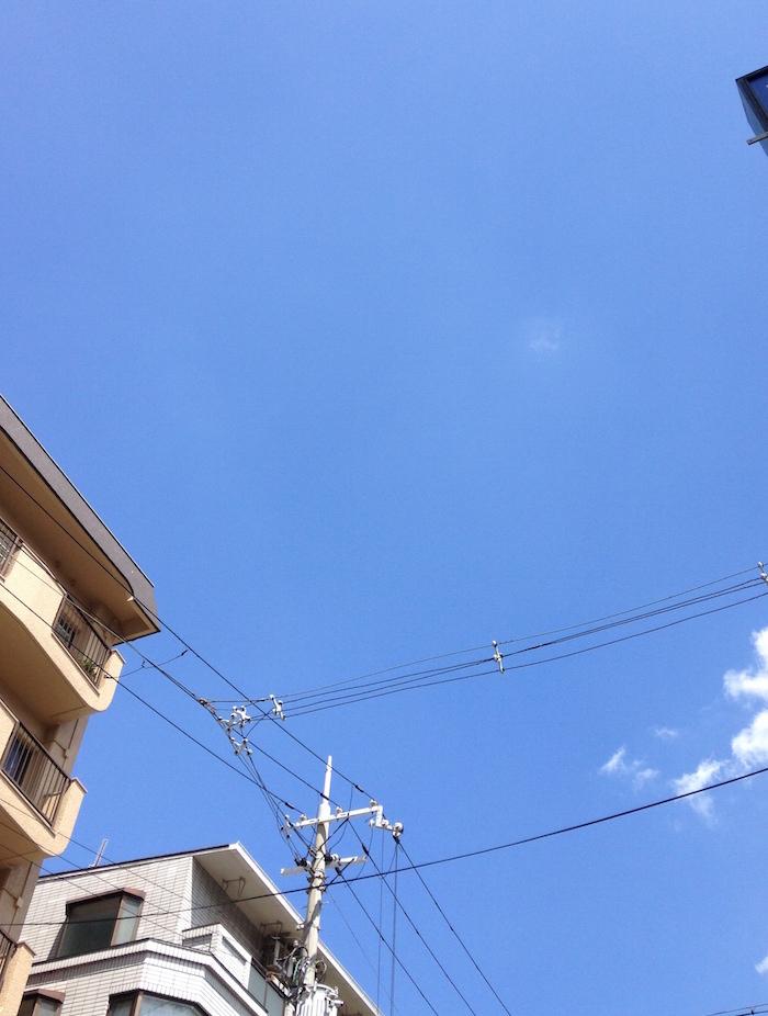 夏空ですね