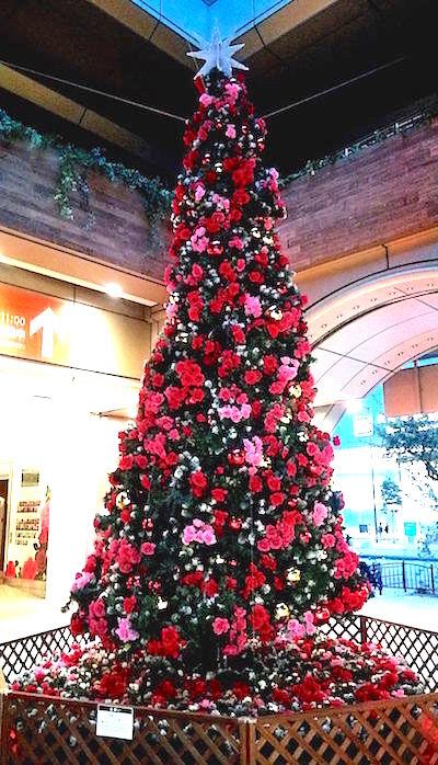 クリスマスツリー(MIO前にて)
