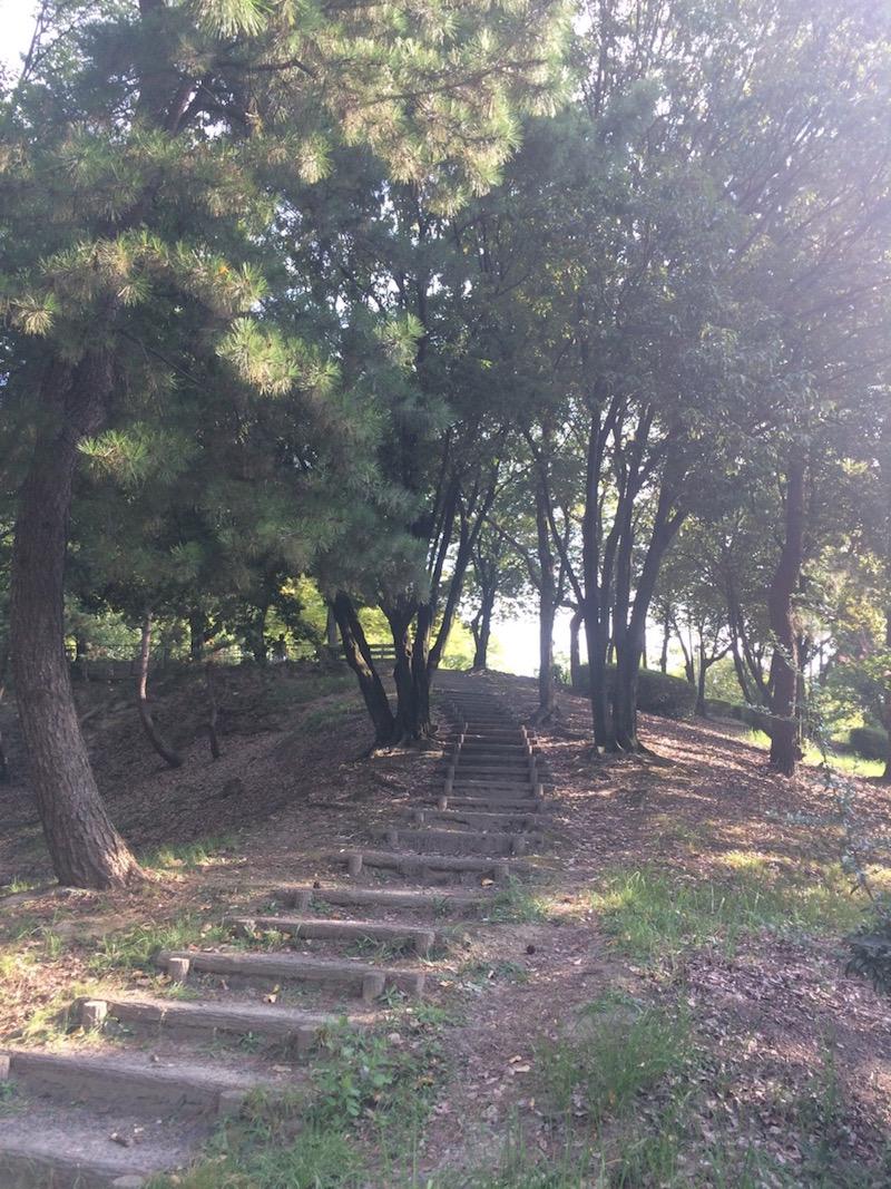階段(家の近くの公園)