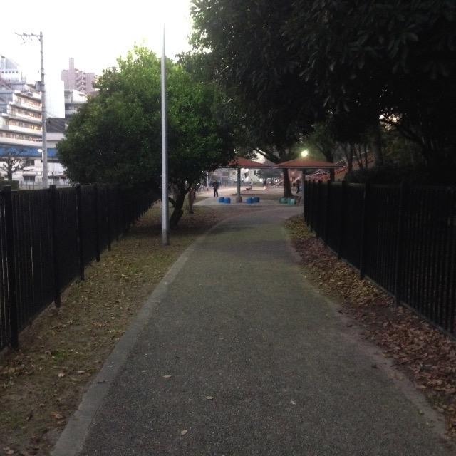 近所の散歩道です。