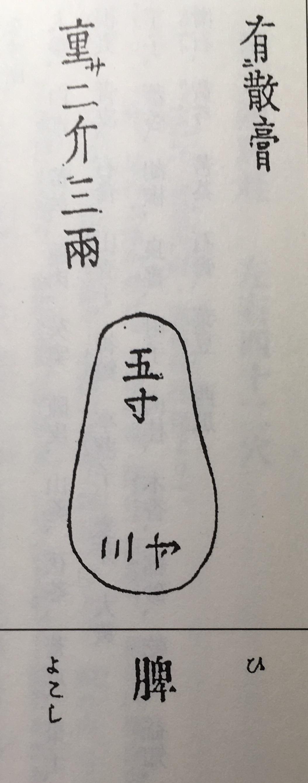 脾の図(和漢三才図会より)