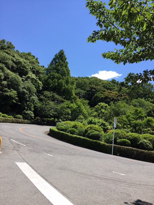 晴天 五月山ドライブウェイ