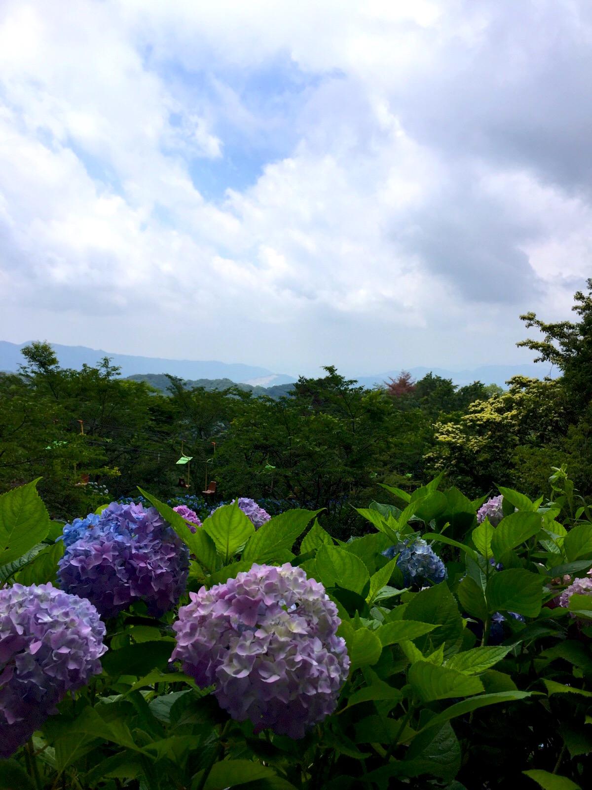 妙見山からの風景