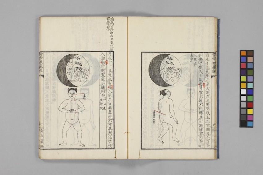 『黄帝蝦蟇経』