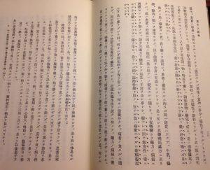 二十八、二十九頁