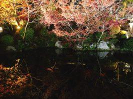 去年の京都にて