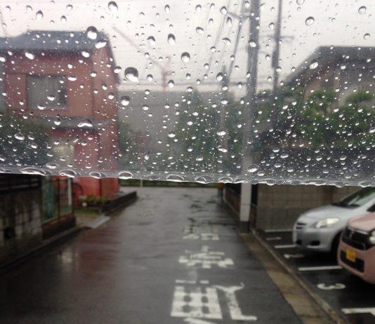 梅雨入りしそうな雨です