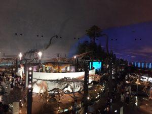 福井県立恐竜博物館 スロープから全体を眺める
