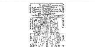 『鍼灸大成 任脈図』