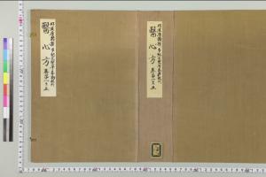 『医心方』(京都大学附属図書館所蔵)
