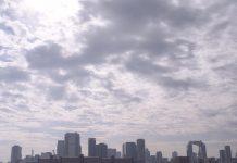 淀川河川敷にて