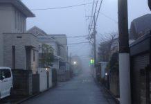 朝の風景。いつもは明るい日差しがありますが、濃い霧が漂っていてどんよりとしてました。