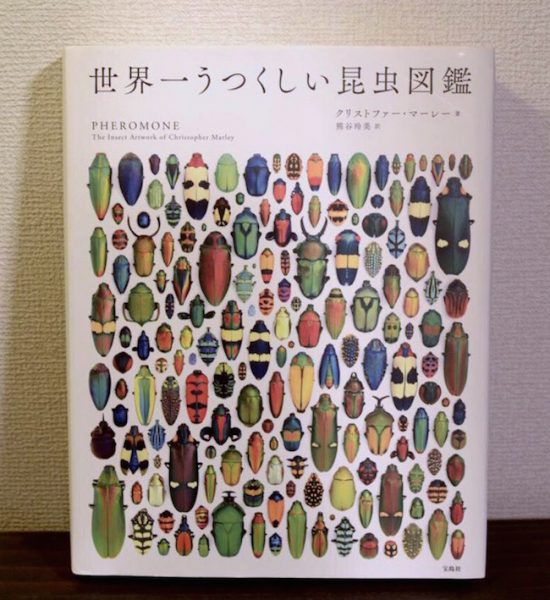 『世界一うつくしい昆虫図鑑』出版社:宝島社