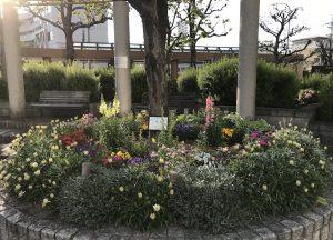 町中にある花壇が華やかでした