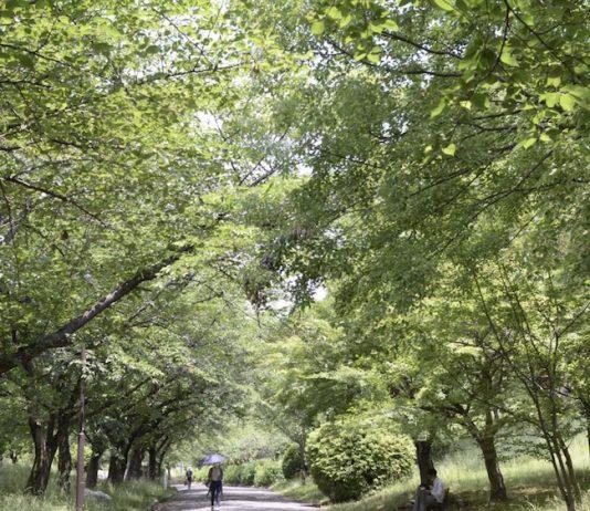 千里南公園にて
