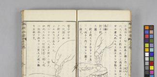 『鍼術秘要 3巻』京都大学附属図書館 Main Library, Kyoto University