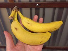 仕事の前にはバナナでチャージ