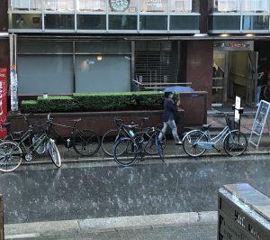 急な大雨(8月末・本院の入口から)