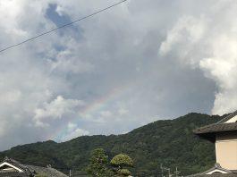 今年3回目の虹