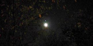 月明かりを頼りに