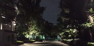大学内の通路
