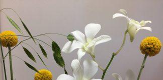 今週のご褒美花